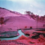 Richard_Mosse_Men_of_Good_Fortune_photograph