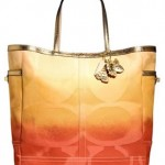 coach_signature_ombre_weekend_tote_bag